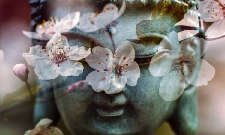ga naar cursus Meditatie en Do-In reeks - Turnhout (Tobe)